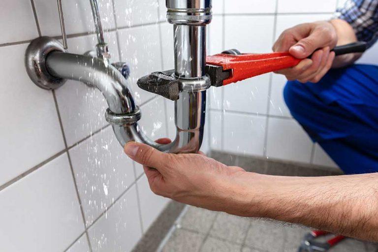365 RPM plumber